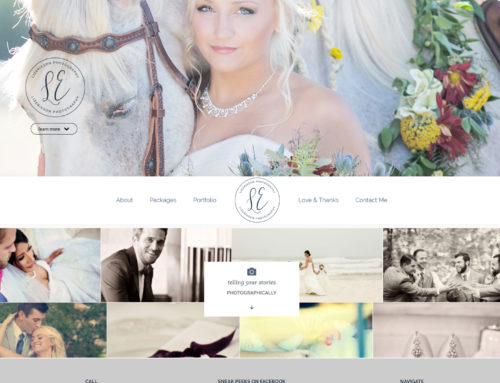 Alpharetta Small Business Website Design – Elizabeth Erikson Photography
