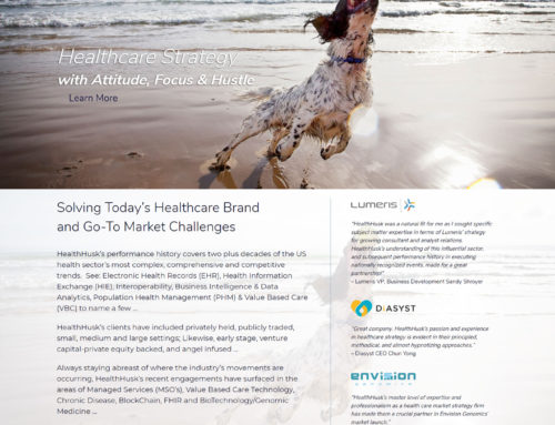 Healthcare Website Design – Health Husk Healthcare Consulting Firm