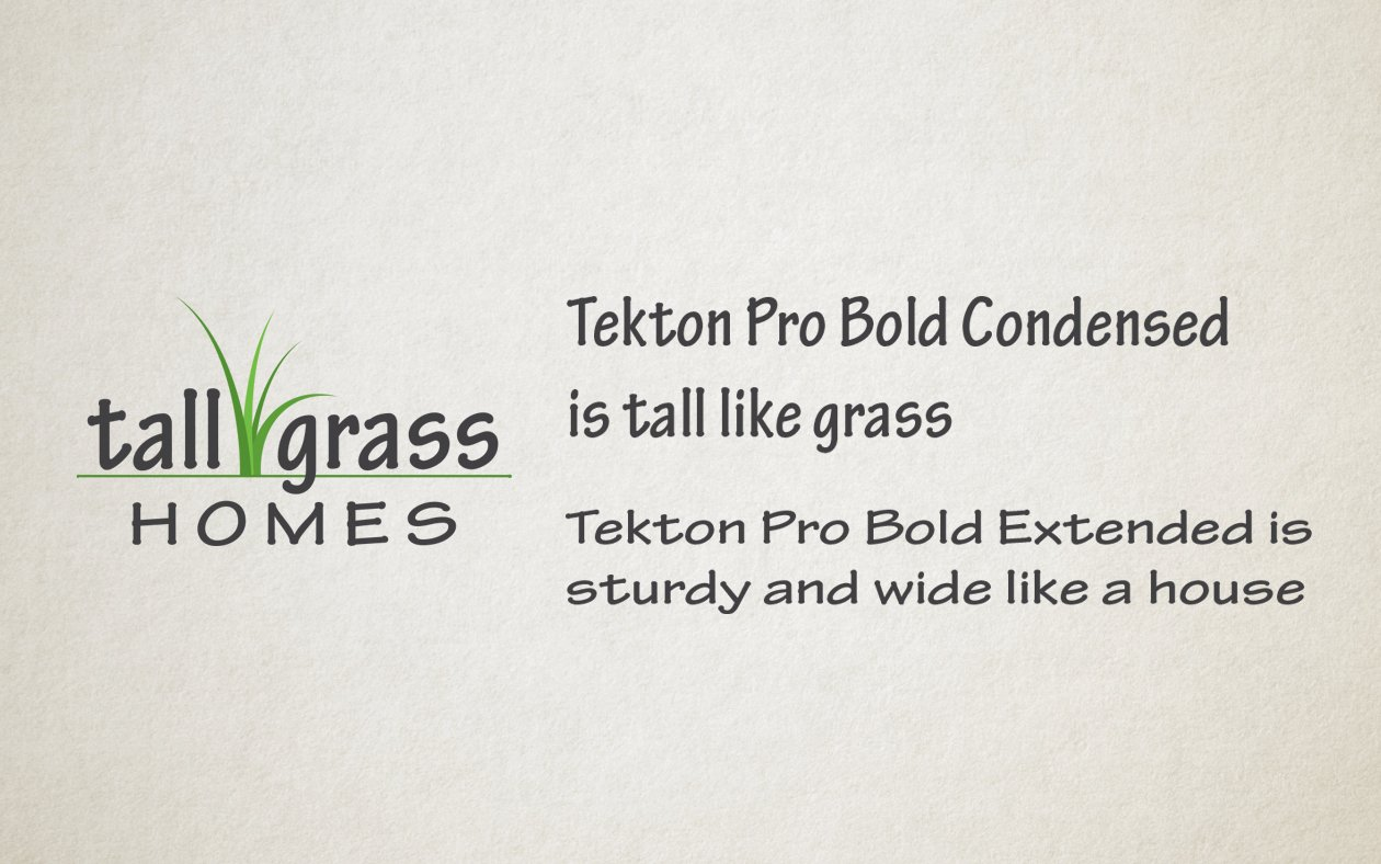 Font choices for Tall Grass Homes Logo